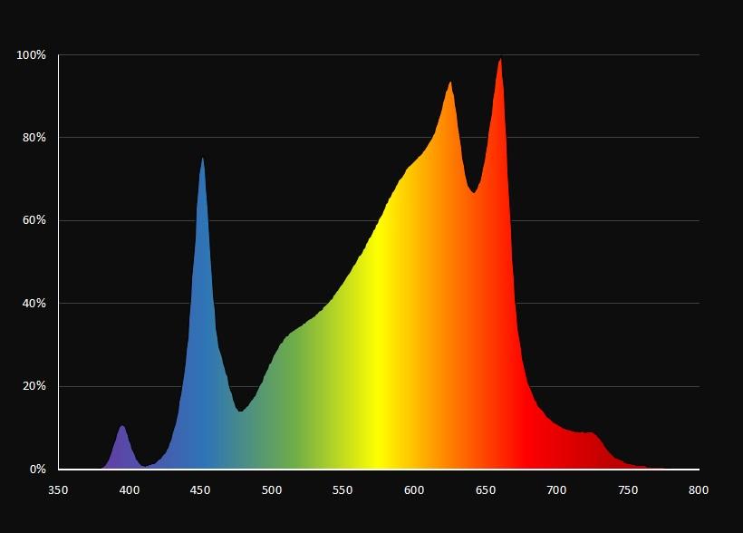 Blütespektrum mit UV