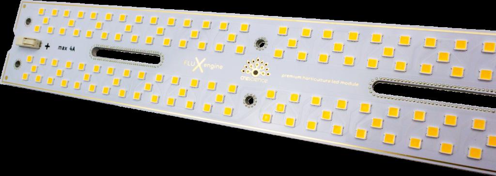 Samsung LM301H vs. LM301B - les meilleures puces LED pour l'éclairage des plantes 2020 2